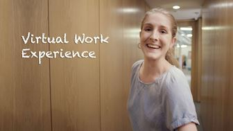Help provide work experience - virtually